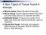 4 main types of tissue found in animals
