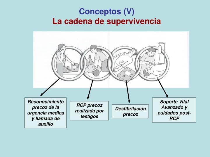 Conceptos (V)