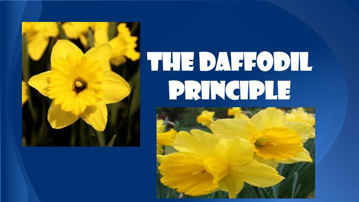 the daffodil principle n.