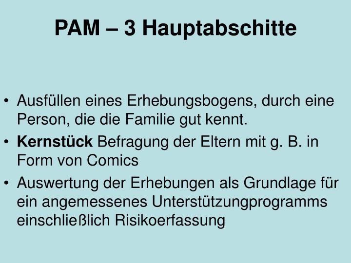 PAM – 3 Hauptabschitte
