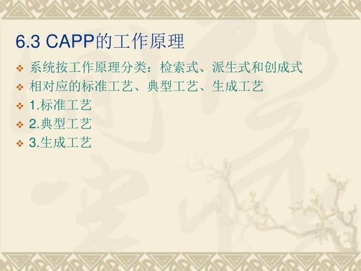 6.3 CAPP