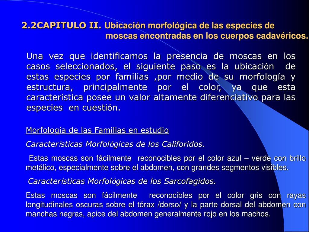 Ppt Academia De Policia Walter Mendoza M Instituto De