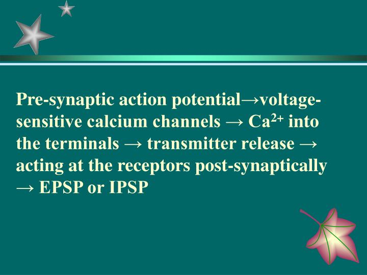 Pre-synaptic action potential