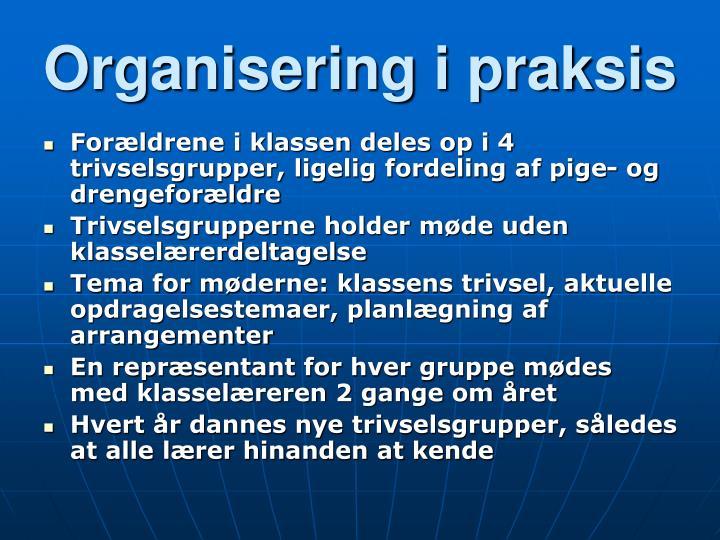 Organisering i praksis