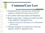 common case law