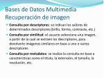 bases de datos multimedia recuperaci n de imagen