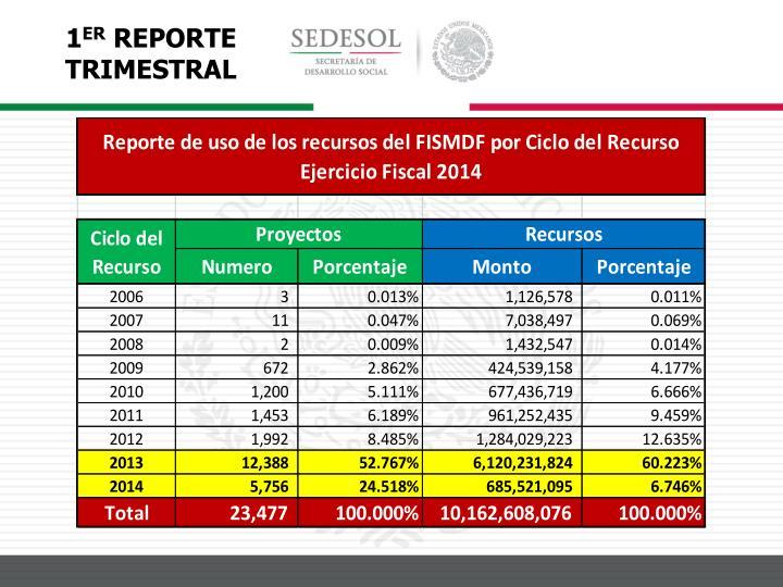 1 er reporte trimestral fais 2014