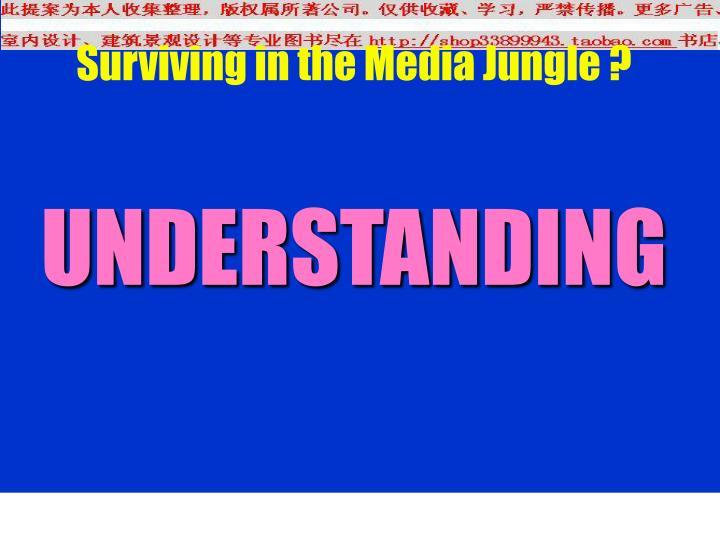 Surviving in the Media Jungle ?