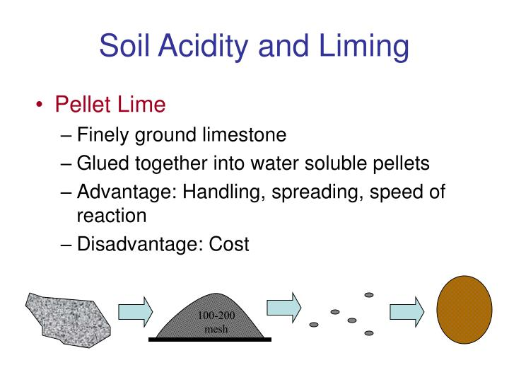 soil acidity and liming n.