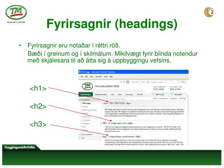 Fyrirsagnir (headings)