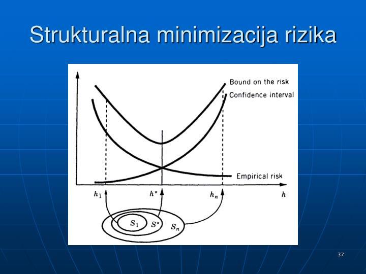Strukturalna minimizacija rizika
