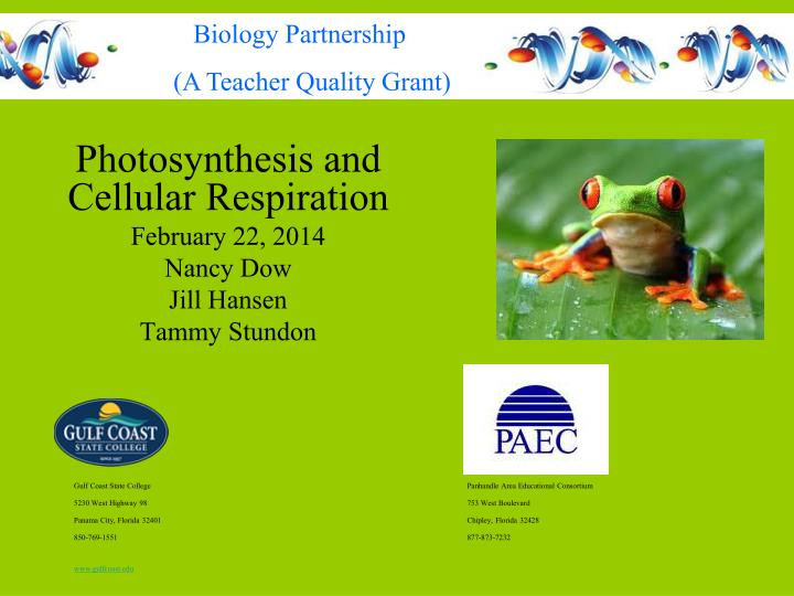 photosynthesis and cellular respiration february 22 2014 nancy dow jill hansen tammy stundon n.