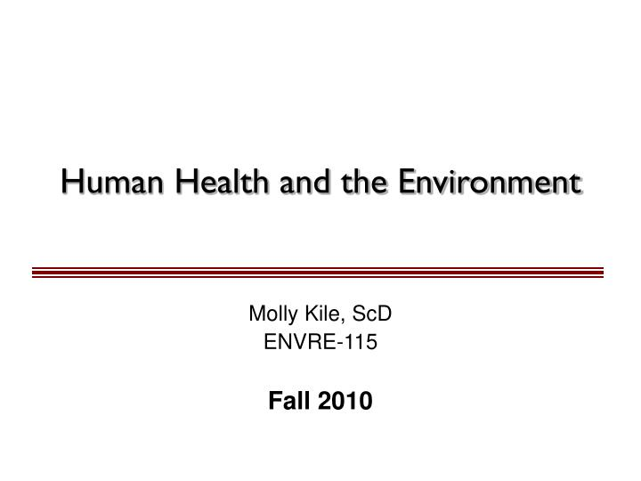 human health and the environment n.