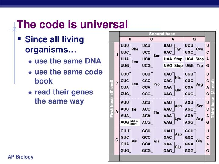 The code is universal