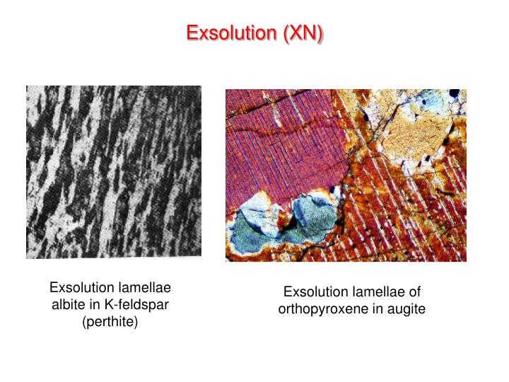 Exsolution (XN)