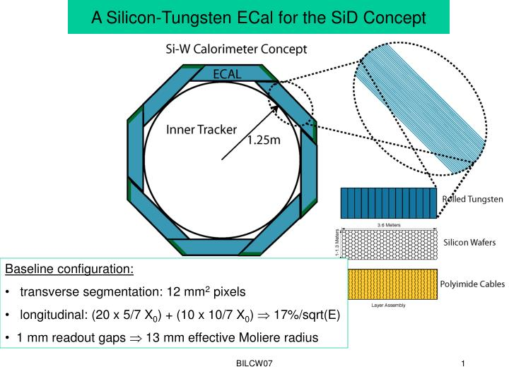 a silicon tungsten ecal for the sid concept n.