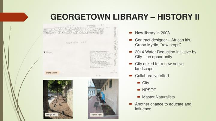 GEORGETOWN LIBRARY – HISTORY II