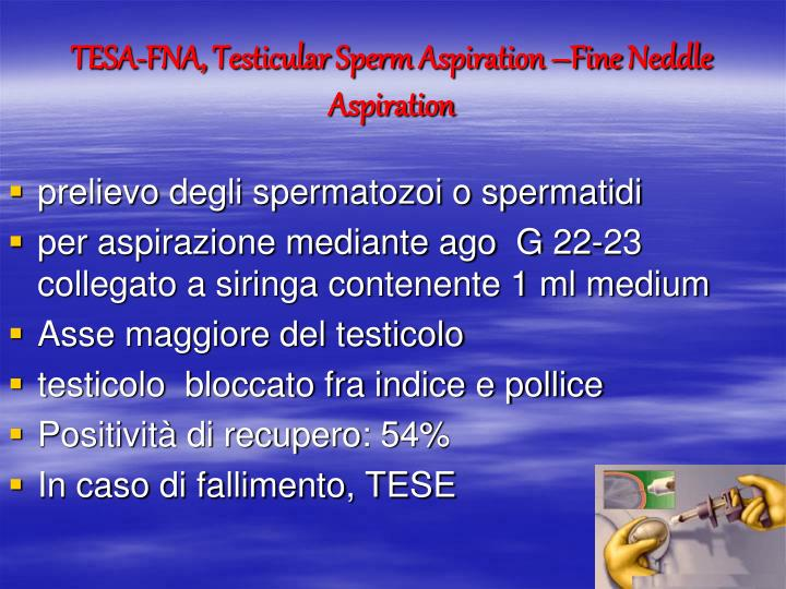 TESA-FNA,