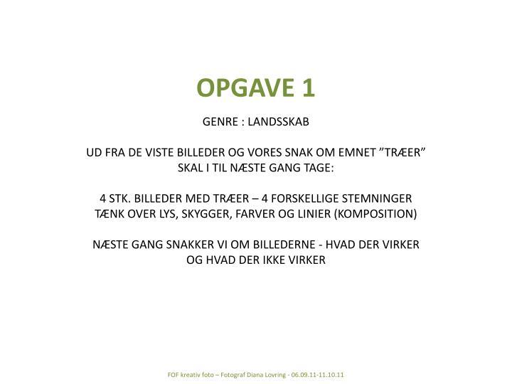 OPGAVE 1