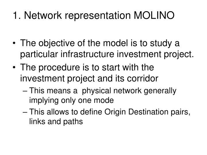1. Network representation MOLINO