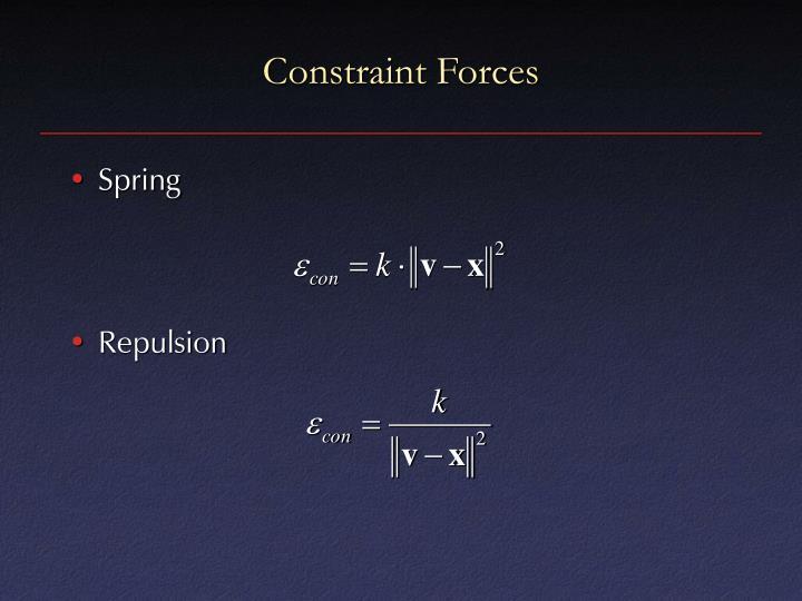 Constraint Forces