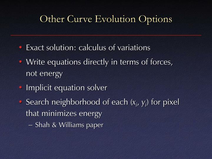 Other Curve Evolution Options