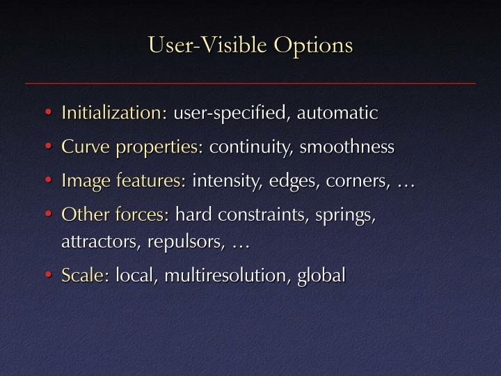 User-Visible Options
