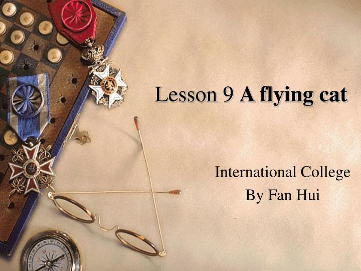 lesson 9 a flying cat n.