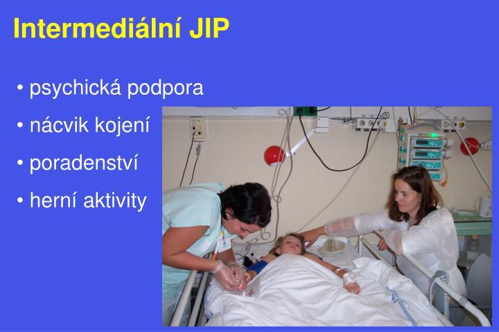 Intermediální JIP