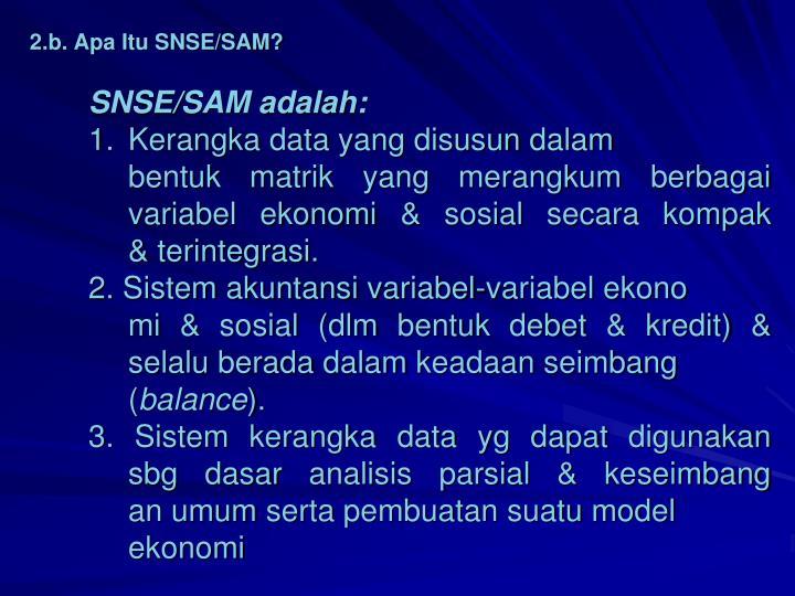 2.b. Apa Itu SNSE/SAM?