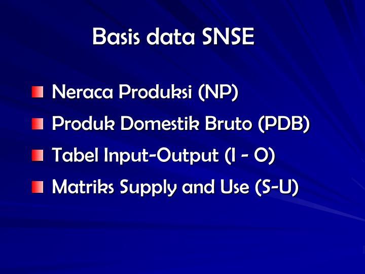Basis data SNSE