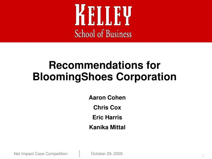 recommendations for bloomingshoes corporation n.