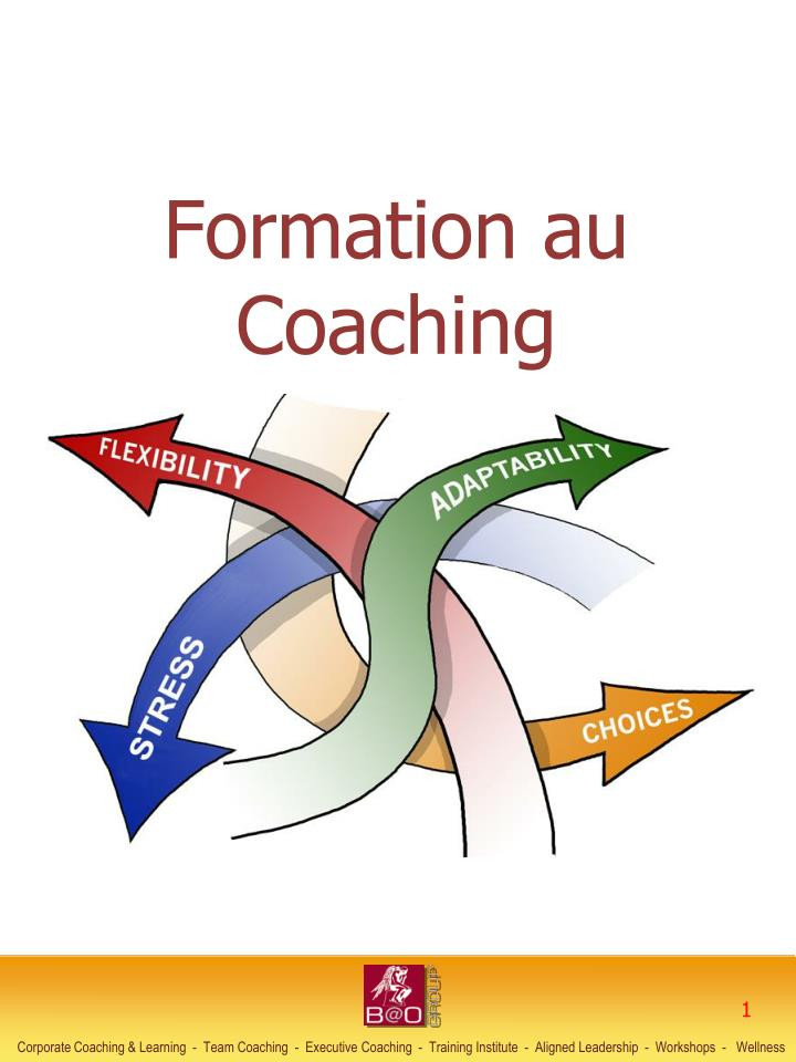 formation au coaching n.