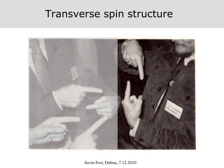 Transverse spin structure