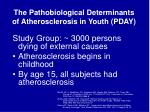 the pathobiological determinants of atherosclerosis in youth pday