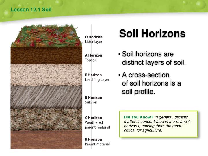 Ppt soil and agriculture powerpoint presentation id for Soil 8 letters