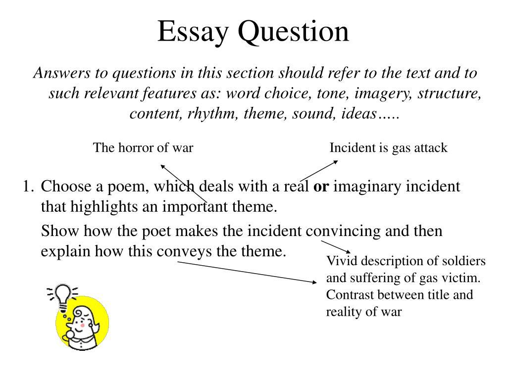 explain essay question
