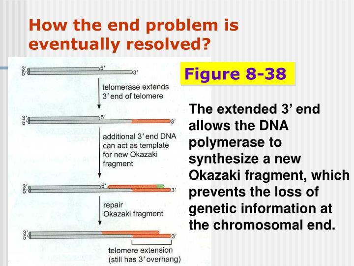 How the end problem is eventually resolved?