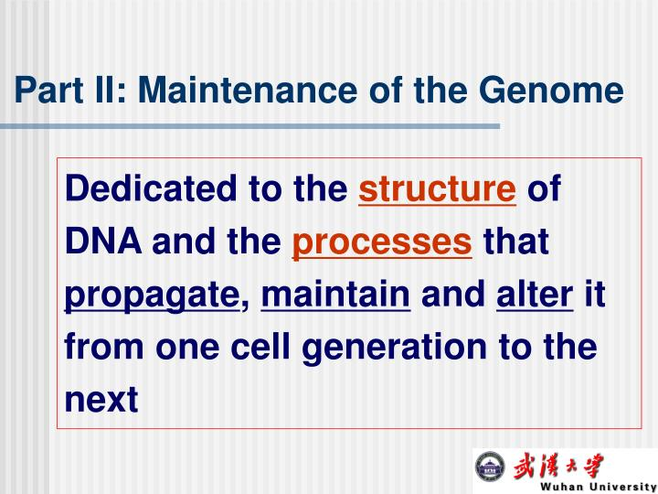 Part II: Maintenance of the Genome