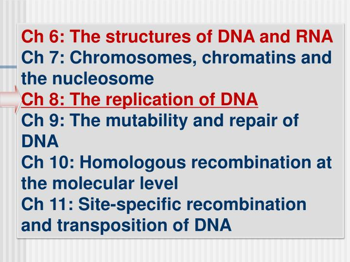 Ch 6: The structures of DNA and RNA