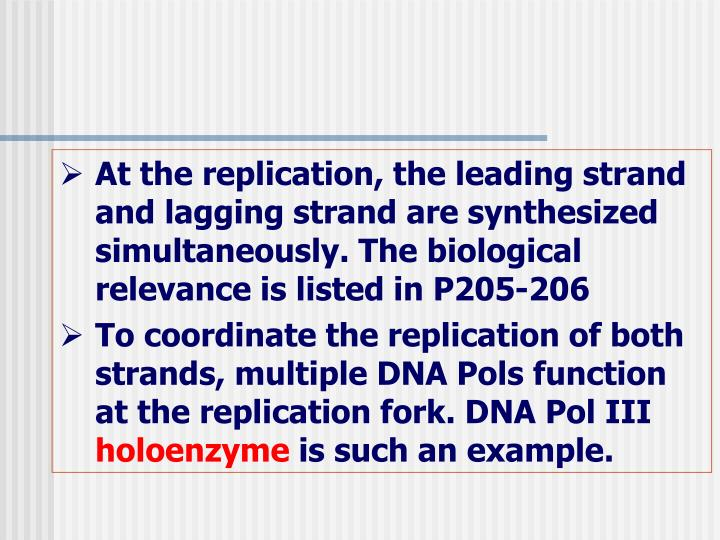At the replication, the leading strand and lagging strand are synthesized simultaneously. The biological relevance is listed in P205-206