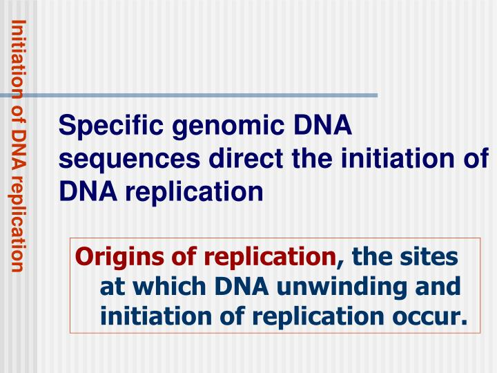 Initiation of DNA replication