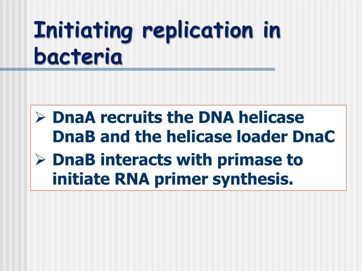 Initiating replication in bacteria