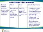 performance information1
