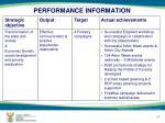 performance information10