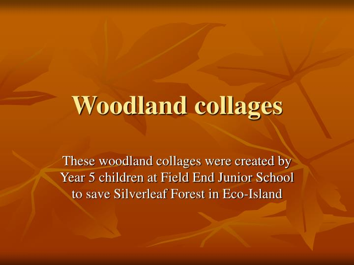 woodland collages n.