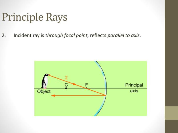 Principle Rays