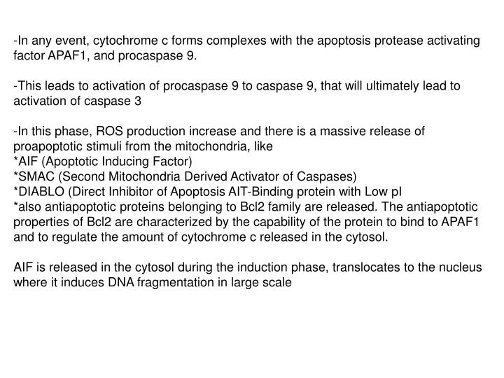-In any event, cytochrome c forms complexes with the apoptosis protease activating factor APAF1, and procaspase 9.