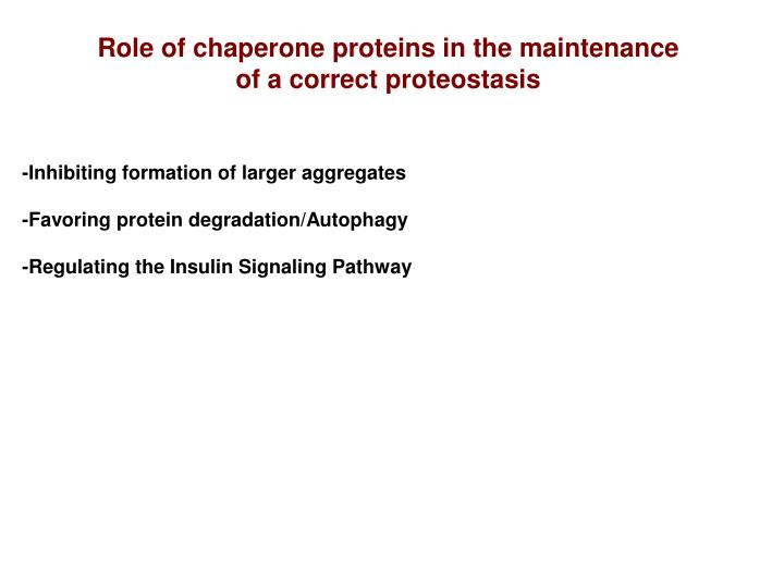 Role of chaperone proteins in the maintenance