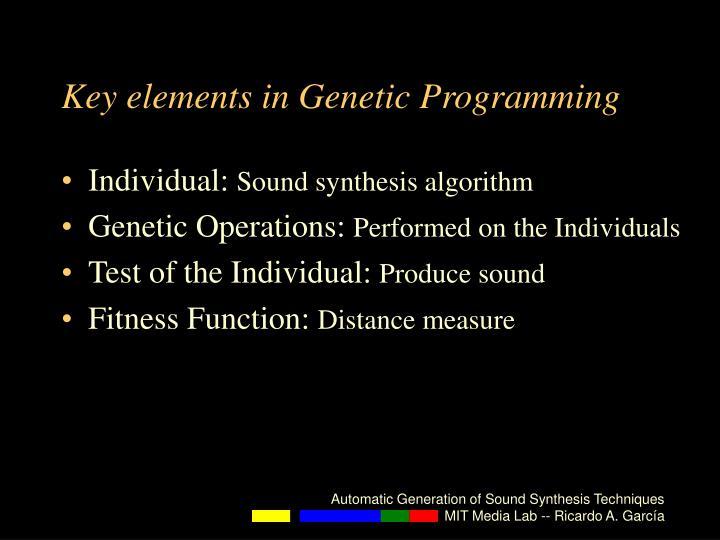 Key elements in Genetic Programming